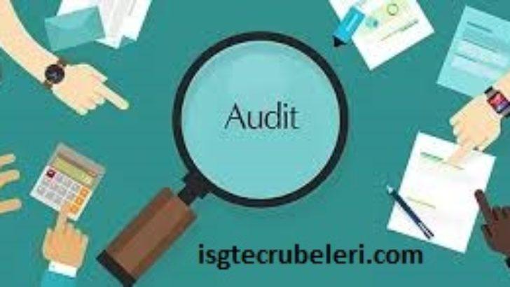 İş Güvenliğinde İç  ve  Dış  Denetleme ( Internal and external audit )