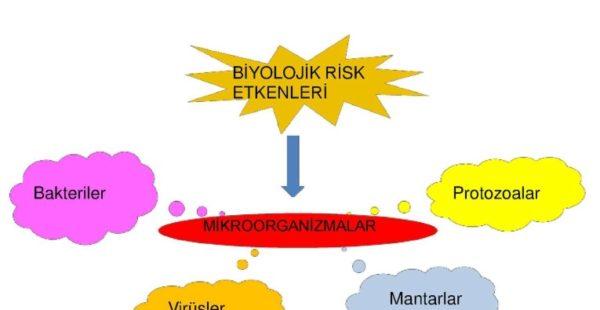 Biyolojik risk etkenleri nedir